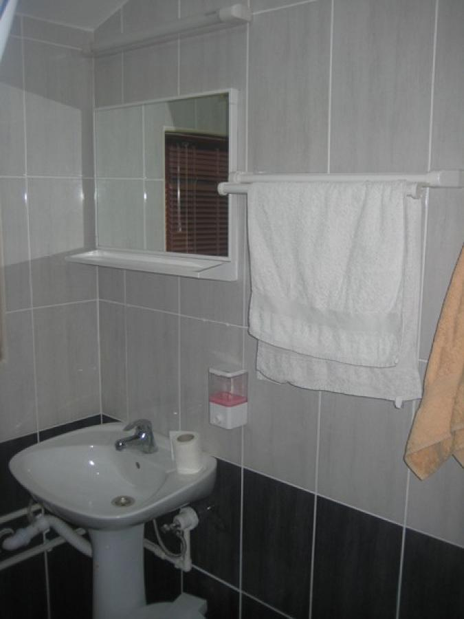 House_Glavonjic_Guca_bathroom_1 (4)